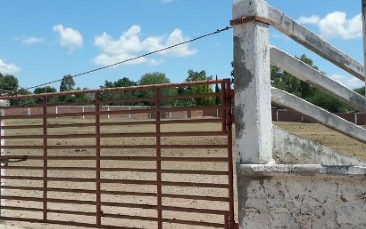 Foto de terreno comercial en venta en, espíritu santo, san juan del río, querétaro, 1289785 no 06