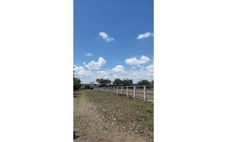 Foto de terreno comercial en venta en  , espíritu santo, san juan del río, querétaro, 1289785 No. 07