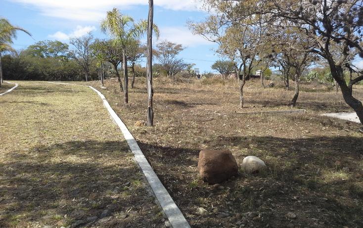 Foto de terreno comercial en venta en  , estancia de san antonio, san miguel de allende, guanajuato, 1181239 No. 02