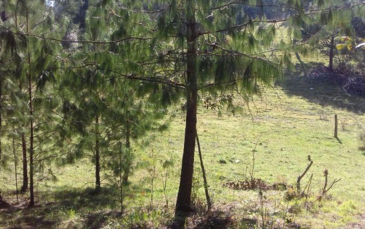 Foto de terreno comercial en venta en, estanzuela, altotonga, veracruz, 1787952 no 01