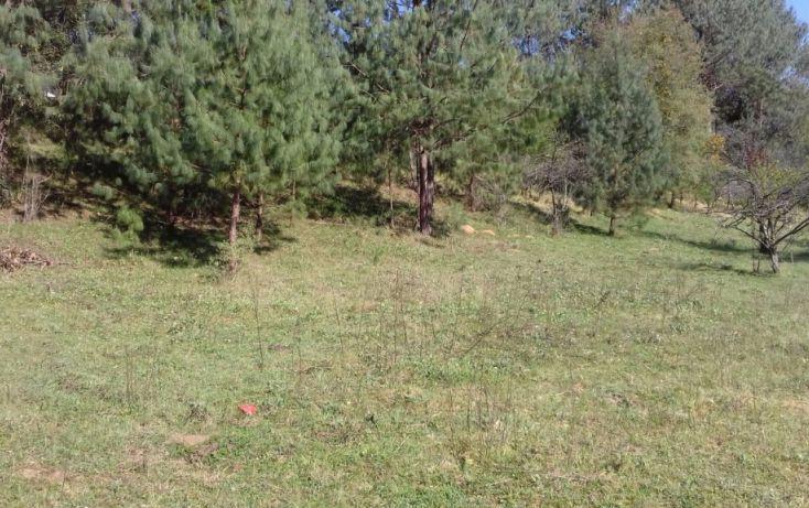 Foto de terreno comercial en venta en, estanzuela, altotonga, veracruz, 1787952 no 02