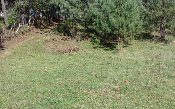 Foto de terreno comercial en venta en, estanzuela, altotonga, veracruz, 1787952 no 03