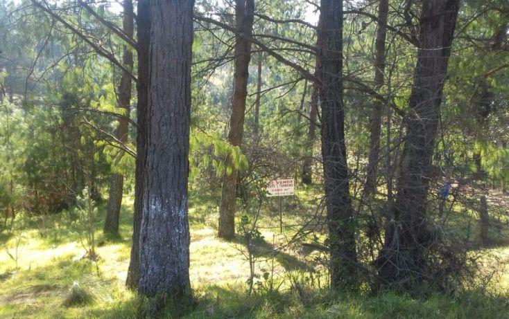 Foto de terreno comercial en venta en, estanzuela, altotonga, veracruz, 1787952 no 04