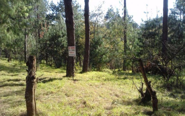 Foto de terreno comercial en venta en, estanzuela, altotonga, veracruz, 1787952 no 06