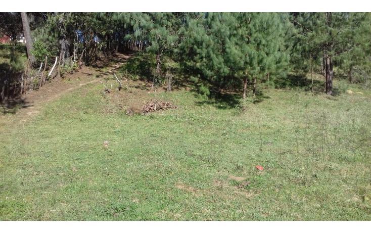 Foto de terreno comercial en venta en  , estanzuela, altotonga, veracruz de ignacio de la llave, 1787952 No. 03