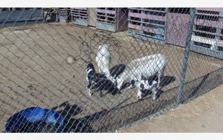 Foto de rancho en venta en estrella 3507, modesto ponce, tijuana, baja california norte, 885075 no 13