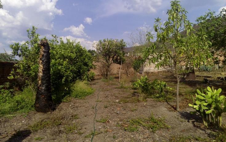 Foto de terreno habitacional en venta en  , etzatlan centro, etzatlán, jalisco, 1894010 No. 01
