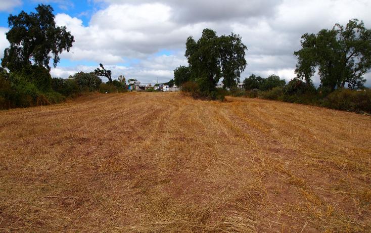 Foto de terreno comercial en venta en  , eucalipto, pachuca de soto, hidalgo, 1507195 No. 06