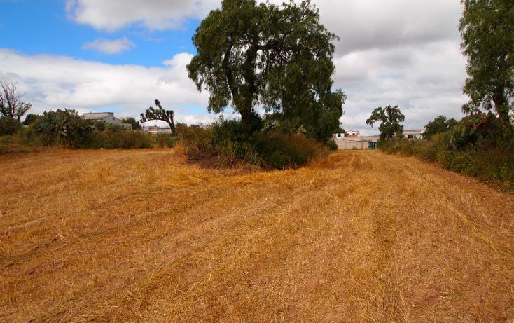 Foto de terreno comercial en venta en  , eucalipto, pachuca de soto, hidalgo, 1507195 No. 08