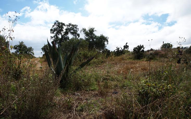 Foto de terreno comercial en venta en  , eucalipto, pachuca de soto, hidalgo, 1507195 No. 09