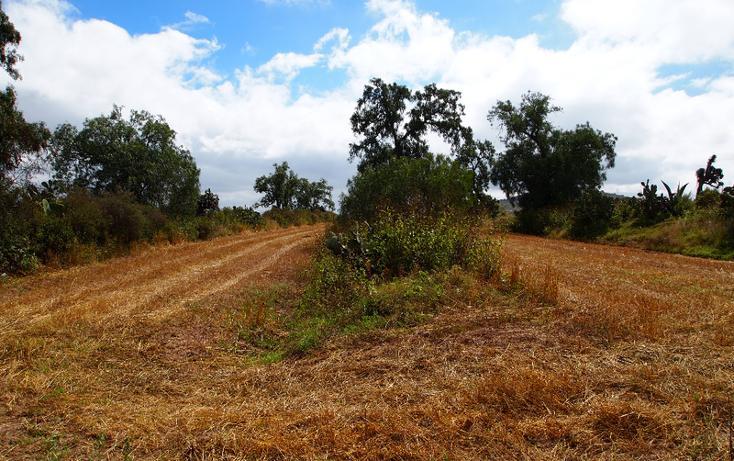 Foto de terreno comercial en venta en  , eucalipto, pachuca de soto, hidalgo, 1507195 No. 10