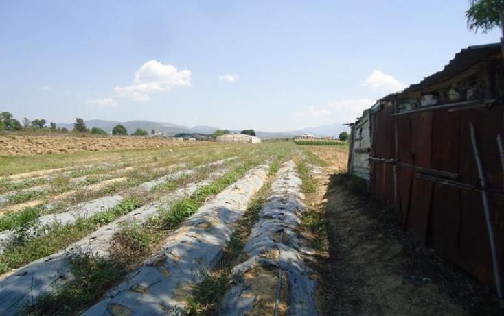 Foto de terreno habitacional en venta en  ..., ex hacienda catano, magdalena apasco, oaxaca, 1787204 No. 02