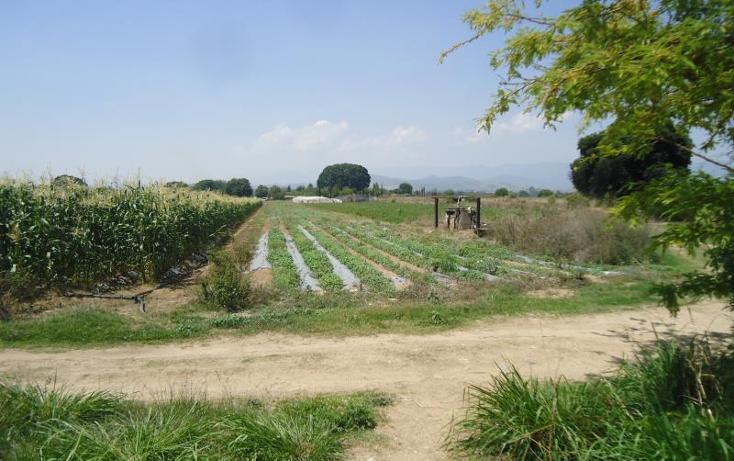 Foto de terreno habitacional en venta en  ..., ex hacienda catano, magdalena apasco, oaxaca, 1787204 No. 04