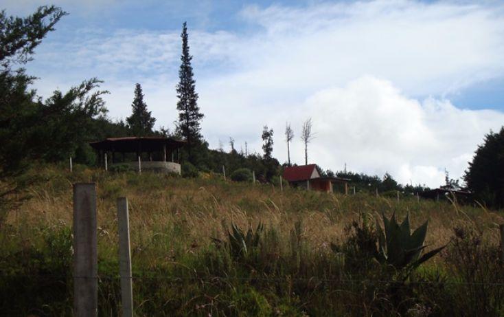 Foto de terreno habitacional en venta en falda del cerro del molcajete, san luis mextepec, zinacantepec, estado de méxico, 1492025 no 08