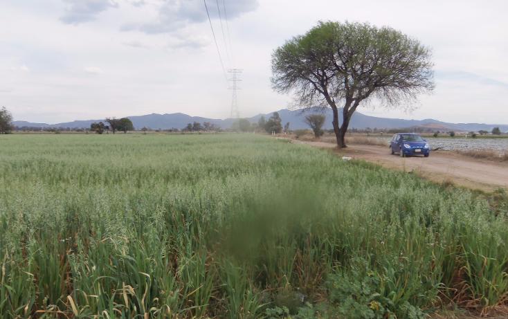 Foto de terreno comercial en venta en  , f?tima (ejido de fuentezuelas), tequisquiapan, quer?taro, 1741462 No. 03