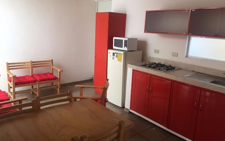 Foto de departamento en renta en  , federal, xalapa, veracruz de ignacio de la llave, 1364889 No. 01