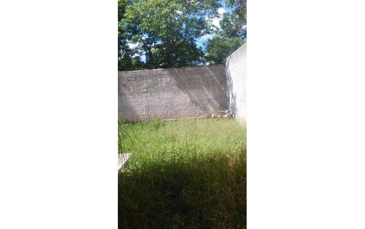 Foto de casa en renta en  , felipe carrillo puerto, m?rida, yucat?n, 1199029 No. 16