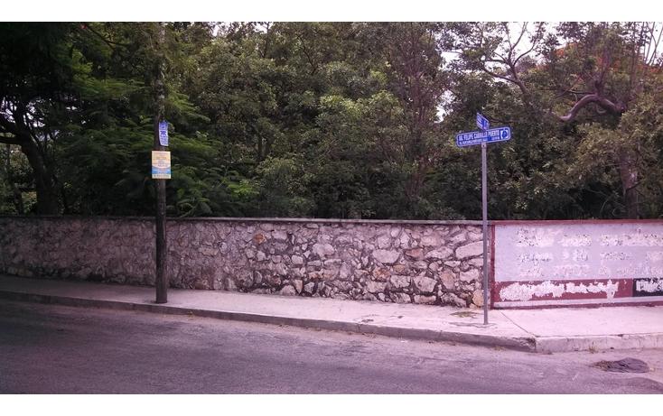 Foto de terreno habitacional en venta en  , felipe carrillo puerto, m?rida, yucat?n, 579757 No. 02
