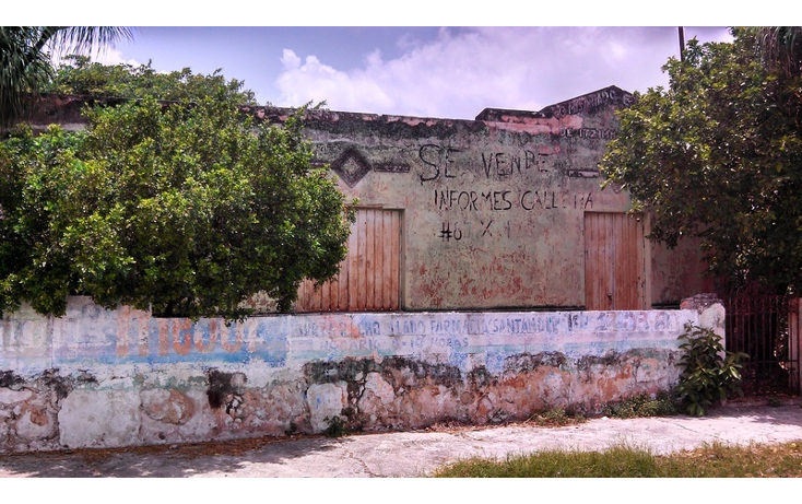 Foto de terreno habitacional en venta en  , felipe carrillo puerto, m?rida, yucat?n, 579757 No. 05