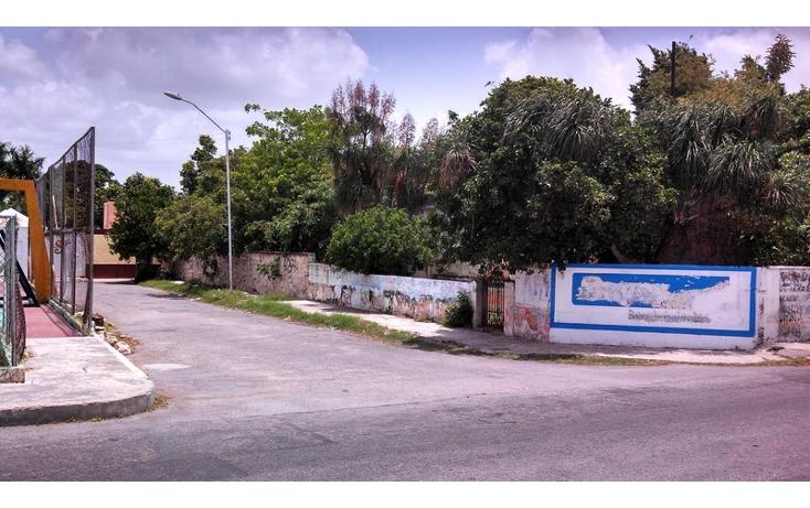 Foto de terreno habitacional en venta en  , felipe carrillo puerto, m?rida, yucat?n, 579757 No. 06