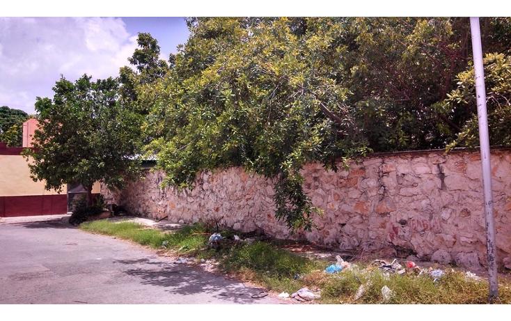 Foto de terreno habitacional en venta en  , felipe carrillo puerto, m?rida, yucat?n, 579757 No. 07