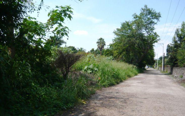 Foto de terreno habitacional en venta en, felipe neri, yautepec, morelos, 1182407 no 05