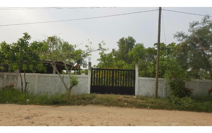 Foto de terreno habitacional en venta en  , fertimex, coatzacoalcos, veracruz de ignacio de la llave, 1966039 No. 01