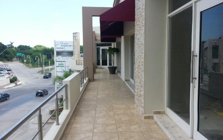 Foto de oficina en renta en  , flamboyanes, tampico, tamaulipas, 1300033 No. 02