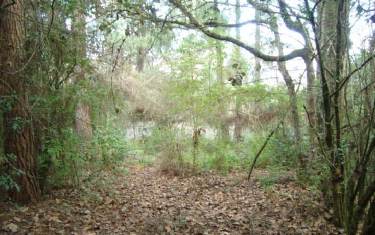 Foto de terreno comercial en venta en flamingo, la cañada, san cristóbal de las casas, chiapas, 1318955 no 06