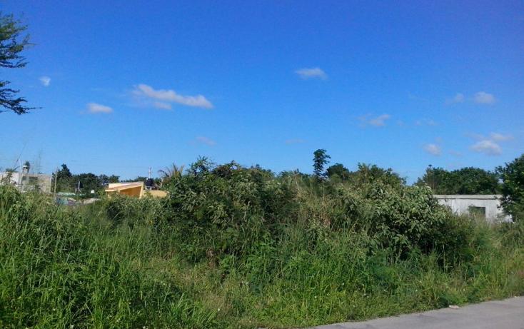 Foto de terreno comercial en venta en  , flor de mayo, kanasín, yucatán, 1741760 No. 02