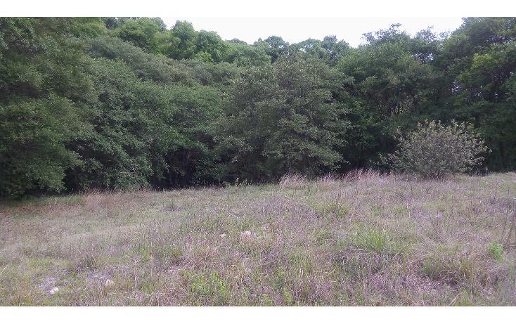 Foto de terreno habitacional en venta en  , flor del bosque, amozoc, puebla, 1294015 No. 04