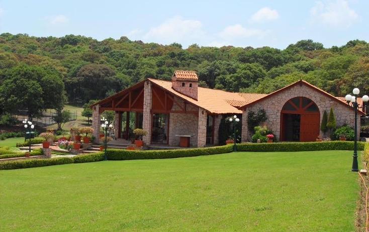 Foto de terreno habitacional en venta en  , flor del bosque, amozoc, puebla, 1384405 No. 11