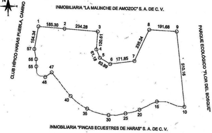 Foto de terreno habitacional en venta en  , flor del bosque, amozoc, puebla, 1384405 No. 14
