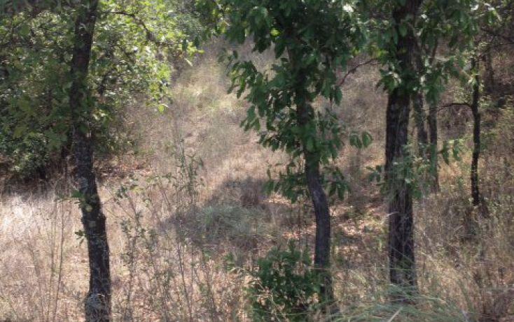 Foto de terreno habitacional en venta en, flor del bosque, amozoc, puebla, 1777316 no 07