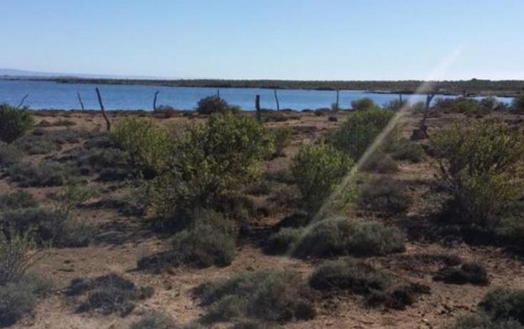 Foto de terreno habitacional en venta en, flores magón, ensenada, baja california norte, 814157 no 10