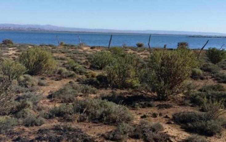 Foto de terreno habitacional en venta en, flores magón, ensenada, baja california norte, 814157 no 11