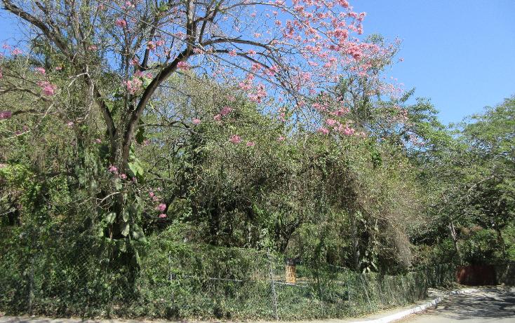 Foto de terreno habitacional en venta en  , flores, tampico, tamaulipas, 1081919 No. 05