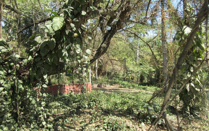 Foto de terreno habitacional en venta en  , flores, tampico, tamaulipas, 1081919 No. 06