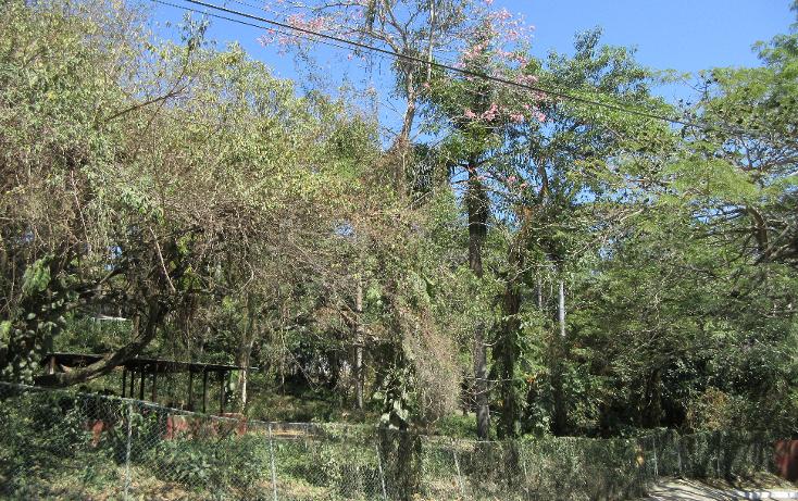 Foto de terreno habitacional en venta en  , flores, tampico, tamaulipas, 1081919 No. 08