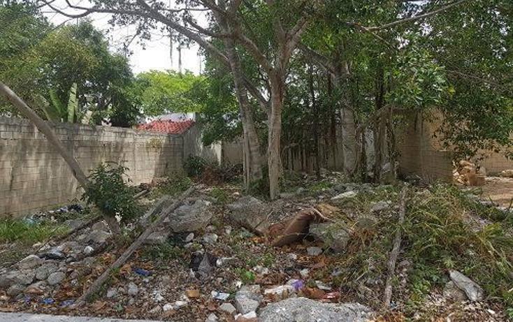 Foto de terreno habitacional en venta en  , forjadores, solidaridad, quintana roo, 1127629 No. 02