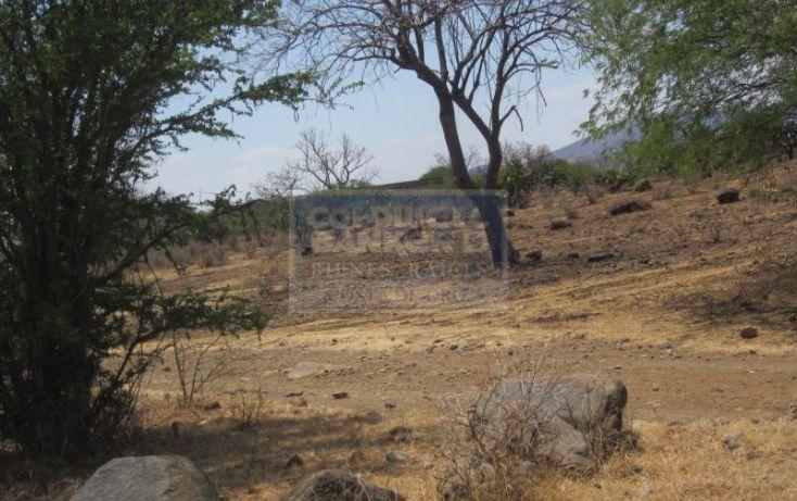 Foto de terreno habitacional en venta en fracc caaverales, tepeojuma, tepeojuma, puebla, 953361 no 05