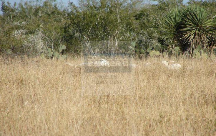 Foto de terreno habitacional en venta en fraccion 17, gral lucio blanco, gustavo díaz ordaz, tamaulipas, 1043339 no 06