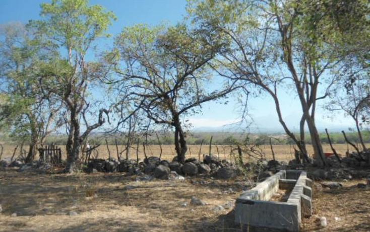 Foto de terreno habitacional en venta en  fraccion a, comala, comala, colima, 1906638 No. 08