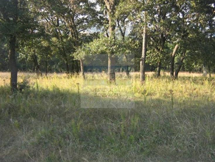 Foto de terreno comercial en venta en fraccionamiento 12 , fincas de sayavedra, atizapán de zaragoza, méxico, 1570966 No. 04