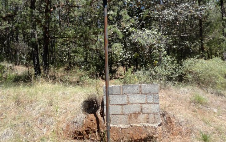 Foto de terreno habitacional en venta en fraccionamiento campestre rancho san francisco, bermúdez, huasca de ocampo, hidalgo, 1856172 no 05