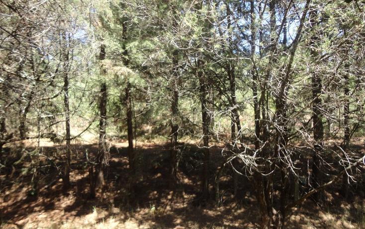 Foto de casa en venta en fraccionamiento campestre rancho san francisco, huasca de ocampo centro, huasca de ocampo, hidalgo, 1909125 no 19