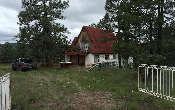 Foto de casa en venta en las quebradas , fraccionamiento las quebradas, durango, durango, 1965417 No. 12