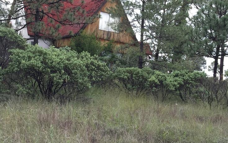 Foto de casa en venta en las quebradas , fraccionamiento las quebradas, durango, durango, 1965417 No. 14