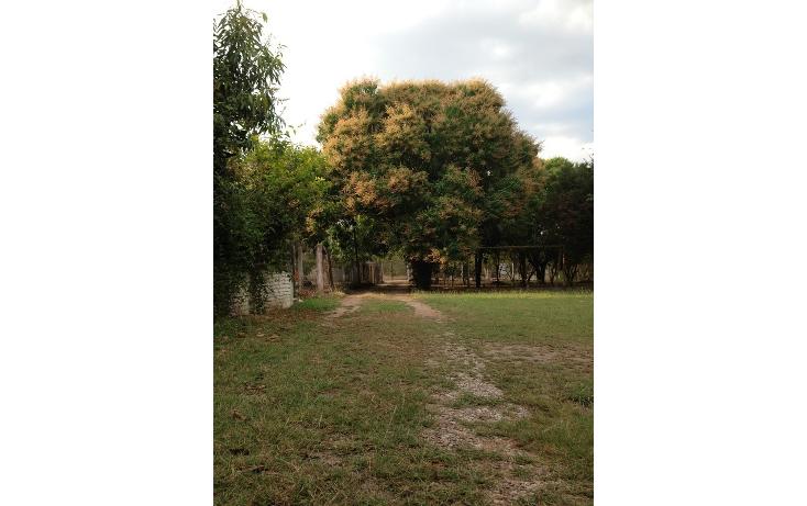 Foto de terreno habitacional en venta en fraccionamiento los tamariandos , ribera las flechas, chiapa de corzo, chiapas, 1865574 No. 03