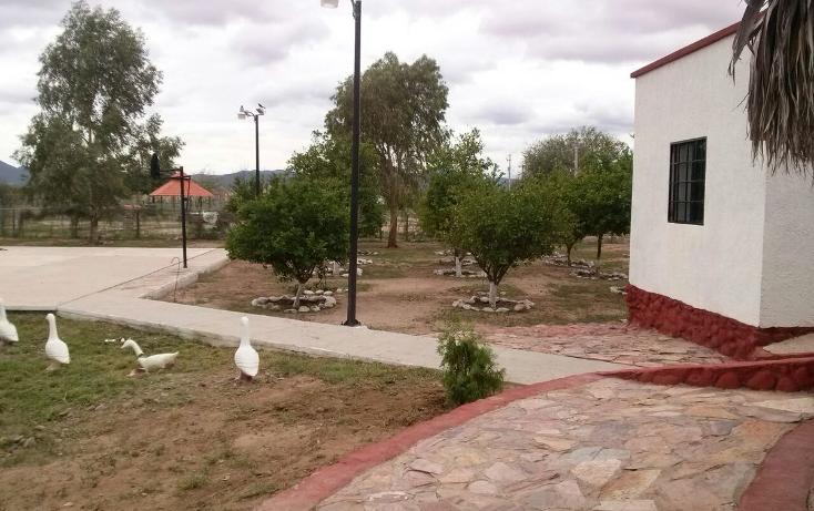 Foto de rancho en venta en  , fraccionamiento r?o bonito, hermosillo, sonora, 1950737 No. 06
